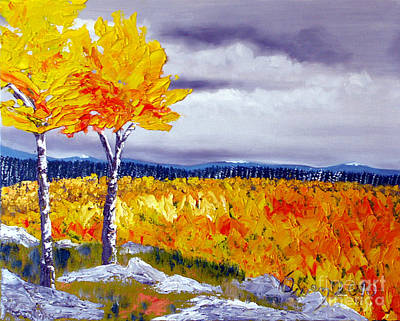 Santa Fe Aspens Series 7 Of 8 Art Print