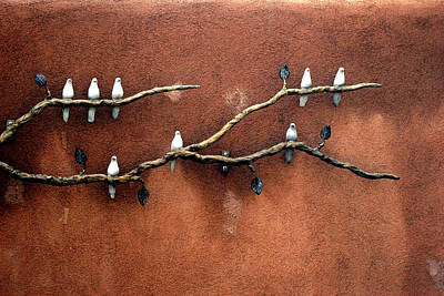 Photograph - Santa Fe Birds by Kenneth Campbell