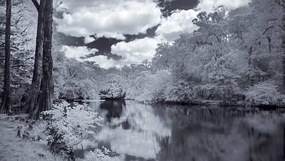 Photograph - Santa Fe River Reflections by Louis Ferreira
