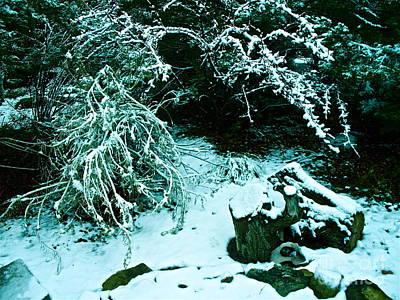 Santa Fe Snow Art Print by Chuck Taylor