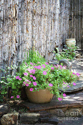 Photograph - Santa Fe Wooden Fence Pink Flowers by Andrea Hazel Ihlefeld