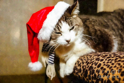 Photograph - Santa Kitty Painterly by Jennifer White