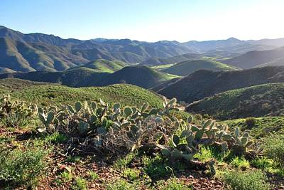 Santa Monica Mountains - Hills And Cactus Art Print
