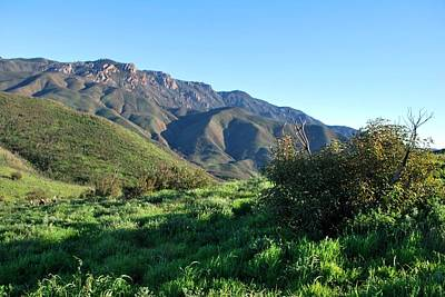 Photograph - Santa Monica Mountains Landscape - Greenery by Matt Harang