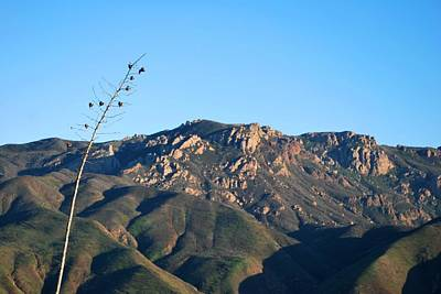 Photograph - Santa Monica Mountains View  by Matt Harang