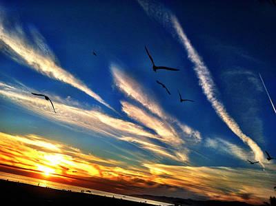 Photograph - Santa Monica Sunset by Braden Moran