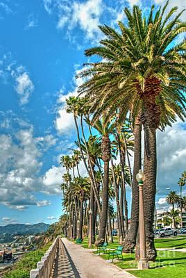 Photograph - Santa Monica's Palisades Park by David Zanzinger