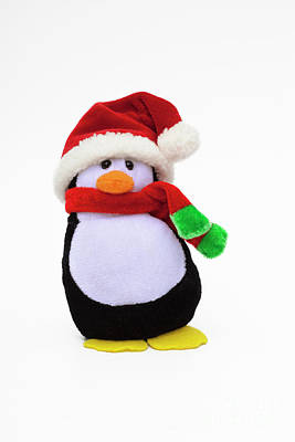 Photograph - Santa Penguin by Diane Macdonald