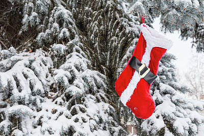 Red Photograph - Santa Stocking by James BO Insogna