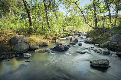 Photograph - Santa Ysabel Creek In Spring by Alexander Kunz