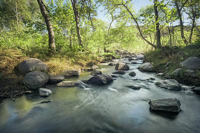 Photograph - Santa Ysabel Creek In Spring by Alexander Kunz