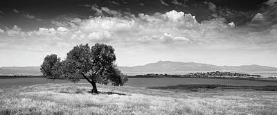 Photograph - Santa Ysabel Panorama by William Dunigan