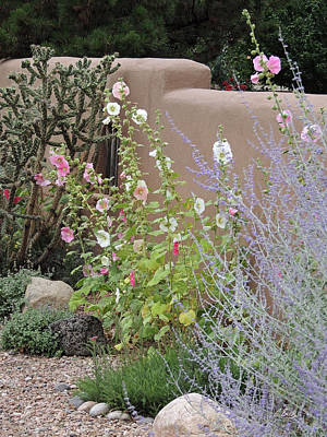 Photograph - Sante Fe Blooms by Gordon Beck