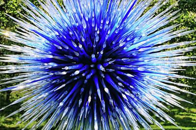 Photograph - Sapphire Star # 2 by Allen Beatty