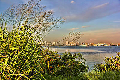 Photograph - Sarasota Florida Skyline by HH Photography of Florida