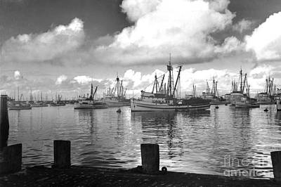 Photograph - Sardine Purse Seiners Fishing Fleet At Anchor, Monterey Bay Circa 1940 by California Views Archives Mr Pat Hathaway Archives