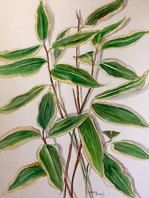 Painting - Sasa Bamboo by Randol Burns