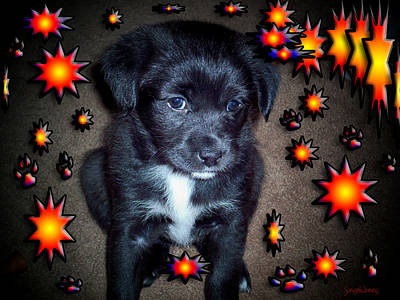 Puppies Mixed Media - Sasha by Robert Orinski