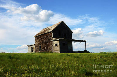 Photograph - Saskatchewan Canada by Bob Christopher