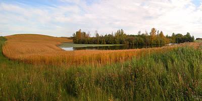 Photograph - Saskatchewan Wheat Field Panorama by Stuart Turnbull