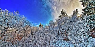 Framed Photograph - Sasquatch Vii by Doug Johnston