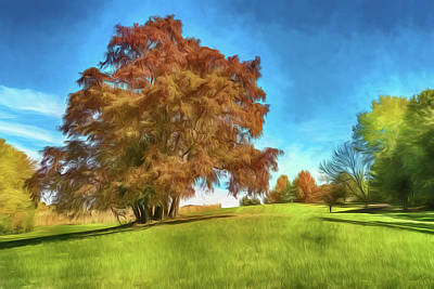 Photograph - Sassafras Tree At Sioux Passage Park Photo Painting 2-7r2_dsc2536_10232017 by Greg Kluempers