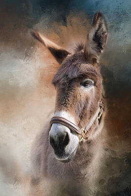 Donkey Photograph -  Lil Sassafrass by Robin-Lee Vieira