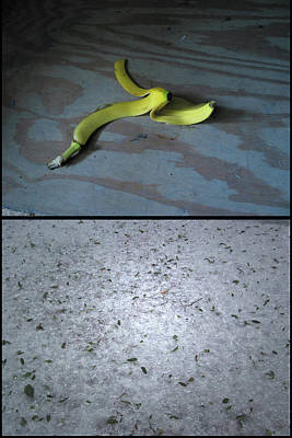 Banana Wall Art - Photograph - Satan by James W Johnson
