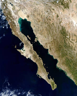 True Color Photograph - Satellite View Of The Gulf Of California by Stocktrek Images