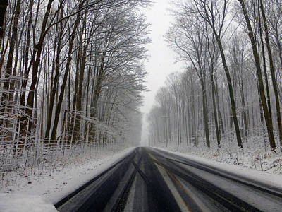 Tinawenger Photograph - Saturday First Snow Of 2015 by Tina M Wenger