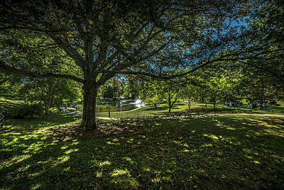 Photograph - Saturday In The Park  by John Repoza