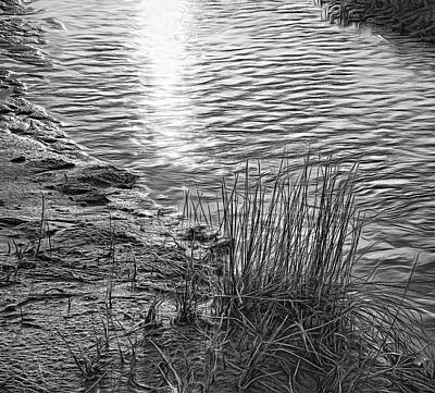 Photograph - Sauble Beach Sunset - Rivulet And Dune Grass Bw by Steve Harrington