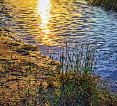 Photograph - Sauble Beach Sunset - Rivulet And Dune Grass by Steve Harrington