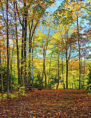 Photograph - Sauble Falls Campsite - Paint by Steve Harrington