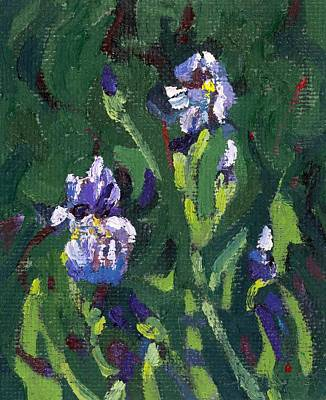 Painting - Saugeen Hillside Wild Iris by Phil Chadwick