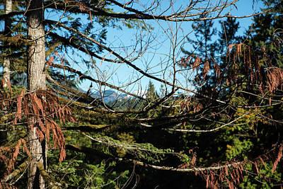 Photograph - Sauk Mountain Peeking by Tom Cochran