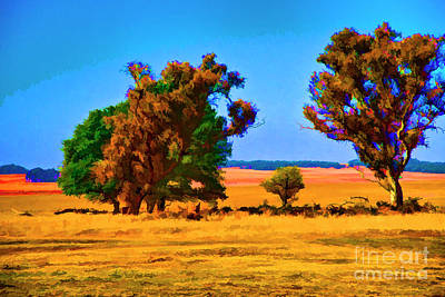 Photograph - Savana Trees by Rick Bragan