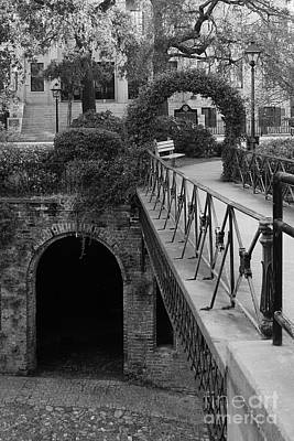 Photograph - Savannah Archways - Black And White by Carol Groenen