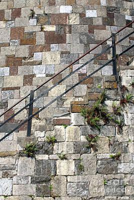 Photograph - Savannah Block Wall Vertical by Carol Groenen