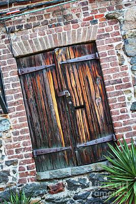 Photograph - Savannah Door by Carol Groenen