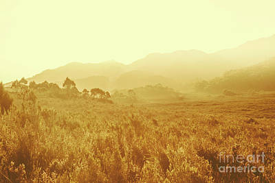 Landscapes Royalty-Free and Rights-Managed Images - Savannah esque by Jorgo Photography - Wall Art Gallery