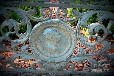 Photograph - Savannah Fence by Carol Groenen