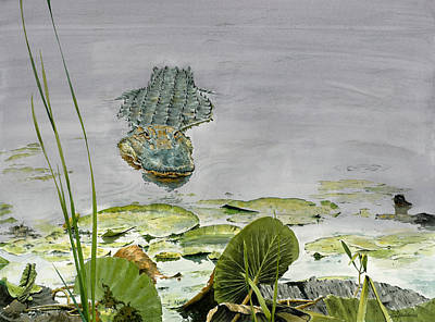 Alligator Painting - Savannah Gator by Tom Hedderich