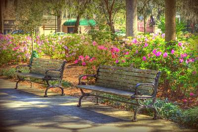 Savannah In Springtime Art Print by Linda Covino