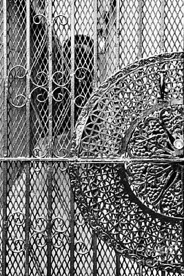 Photograph - Savannah Intrigate Gate by Heather Green