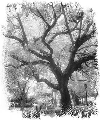 Savannah Infrared Photograph - Savannah Ir 1091 by Bob Neiman