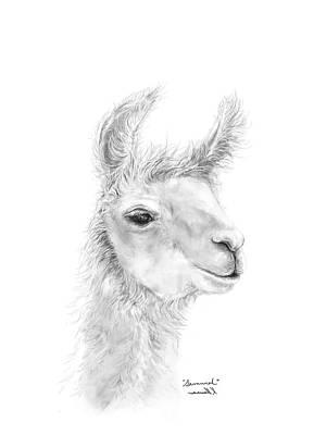Drawing - Savannah by K Llamas