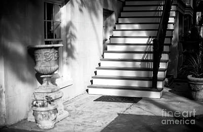 Photograph - Savannah Light And Shadows by John Rizzuto