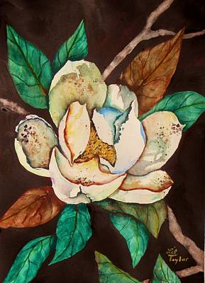 Painting - Savannah Magnolia by Lil Taylor