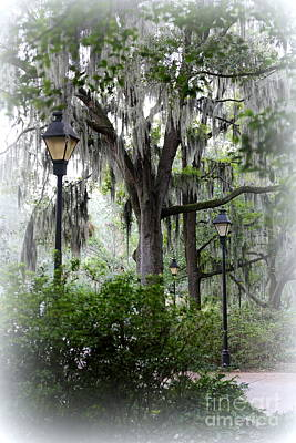 Photograph - Savannah Mist by Carol Groenen